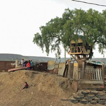 Chim↑Pom built a treehouse on the US-Mexico Border
