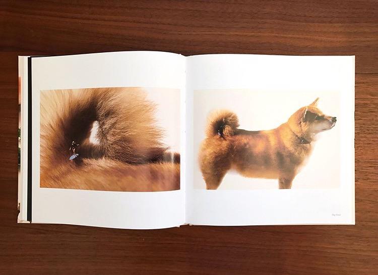 Tatsuya Tanaka's Miniature Wonders Coming to Print | Spoon