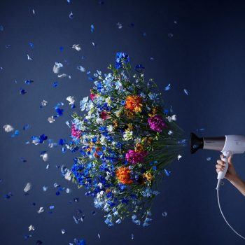 Home Appliances in Full Bloom by Flower Artist Takayuki Tanaka