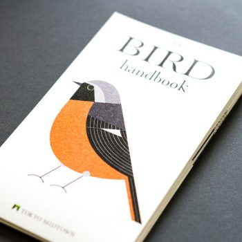 The Birds of Tokyo Beautifully Illustrated by Ryo Takemasa