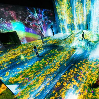 TeamLab to Get Permanent Digital Art Museum Opening This Summer in Tokyo