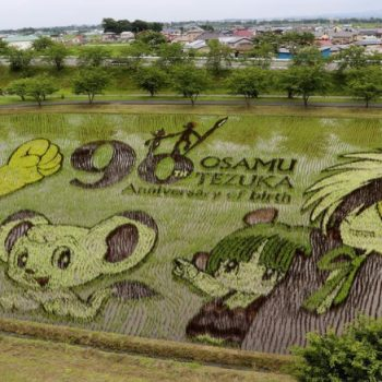 Manga Artist Tezuka Osamu's 90th Anniversary Commemorated in Rice Paddy Art