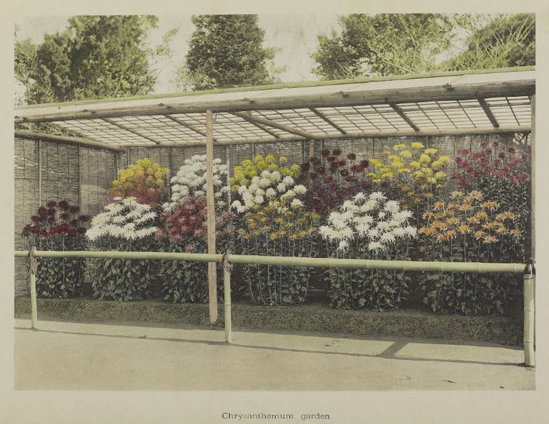 Hand Colored Photographs From The Late 1800s By Ogawa Kazumasa
