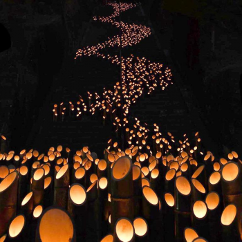 20,000 Bamboo Lanterns Illuminate the Chikuraku Festival