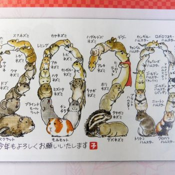 Japanese Designer New Year's Cards of 2020