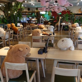 A Zoo in Japan is Using Stuffed Animal Capybaras to Maintain Social Distancing