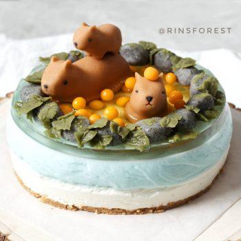 Capybara Onsen Cheesecake