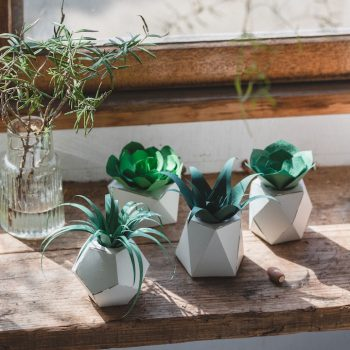 Papelants: Collapsible Paper Plants for the Home