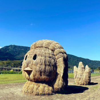 Japan's Rice Art Festivals of 2021