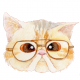Illustrated Watercolor Portraits of Bespectacled Cats by Noryco